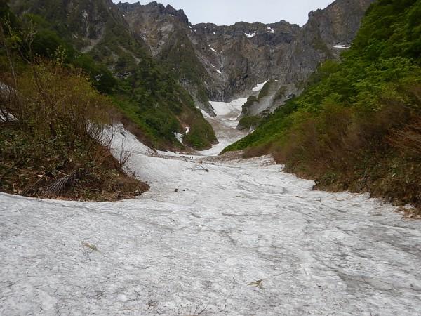 テールリッジまで雪渓がしっかり残っています。
