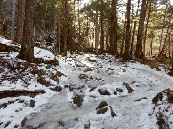 南沢方面は、ご覧のとおり、トレースが凍り、つるつる状態でした。