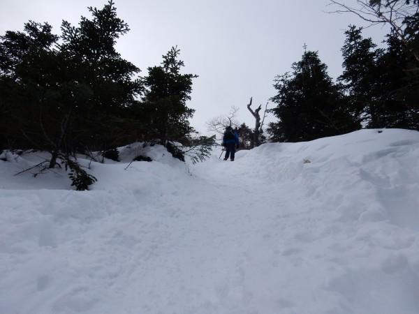 文三郎尾根を登ります。なかなかの急登です。 トレースは、ばっちりあり、雪もしまっていました。