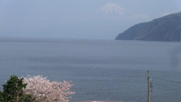 富士山遠望。翌日、土肥の丸山近くから。