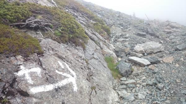 標高2900m・・・などの道標に励まされながら進みます。