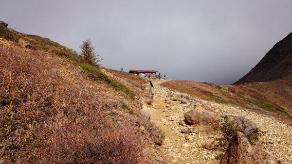 整備の行き届いた歩きやすい登山道です。ありがたや~~