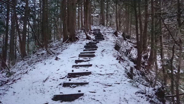 さっそく急な登りが始まります。