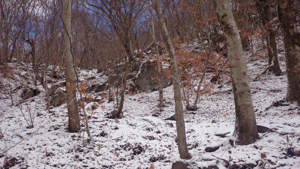 女岩より急な登りが始まります。